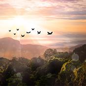 Puedes enfrentar la vida con fe, Fe ante situaciones difíciles, Martha Smock, La Palabra Diaria
