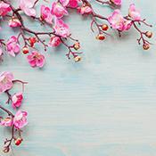 El amor divino, Autoaceptación, Paz interna, Robert Brumet, 12 Poderes Amor