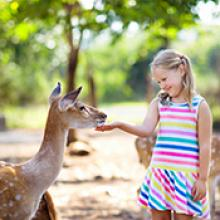 Despetar la alegría: Soy una hija perfecta de Dios, llena de sabiduría, paz, alegría y luz.
