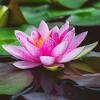 Toma tiempo para orar a diario centrando su respiración para calmar la mente ocupada y relajar el cuerpo.